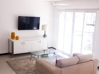 Brand New Modern one bedroom apartment 2 bathrooms, São José