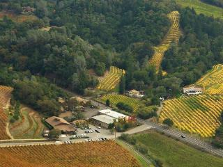 Sapphire Canyon Vineyard Guest House, Geyserville