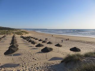 Praia Morena beach
