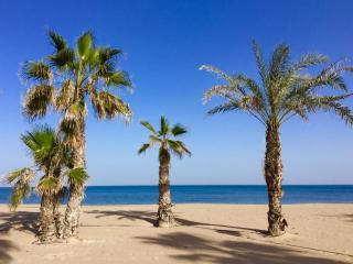PLAYA Y SOL TODO EL AÑO, Alicante