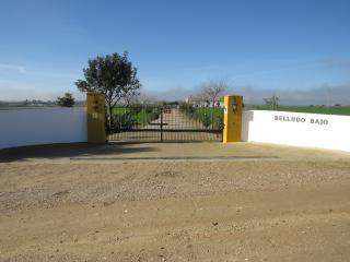 Antigua casa de campo entre Jerez y El Puerto