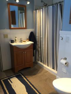 Loft bathroom with shower and heated towel rack.
