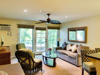 10% off the nightly rate 8/1-8/31 Aina Nalu K109!, Lahaina
