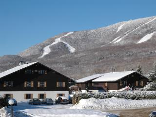 Chalets Montmorency Swiss-style buildings 800 meters from Mont-Sainte-Anne.