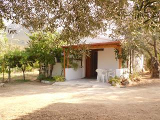 Villa L'Oliveto, Oliena