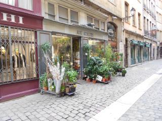 Studio Rénové Quartier Vieux Lyon