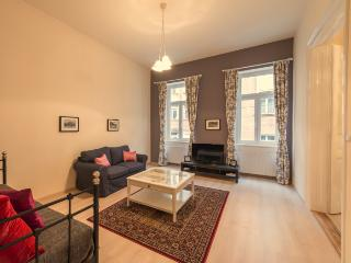 Jewel apartment in VI Terézváros {#has_luxurious_…