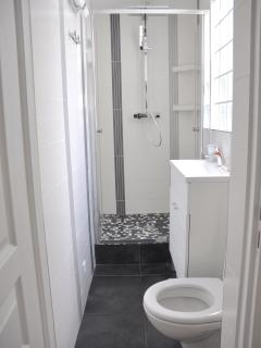 And one toilet per bathroom... It's a 2 toilets apartment !