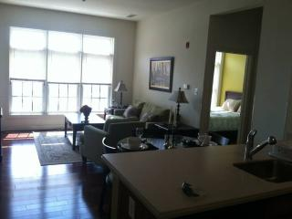 Stunning 2 Bedroom, 2 Bathroom Condo in Baltimore