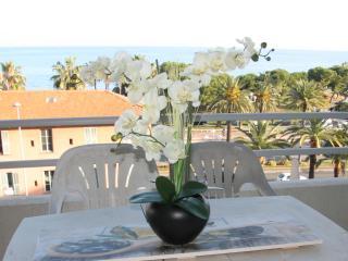 CAlifornian Suite,2 beds flat, ac,terrace sea view