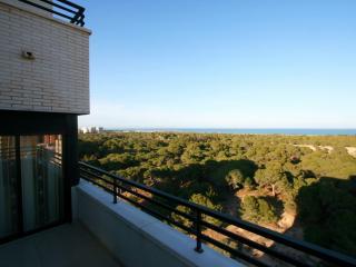 Wonderful Sea View Penthouse with roof terrace, Guardamar del Segura