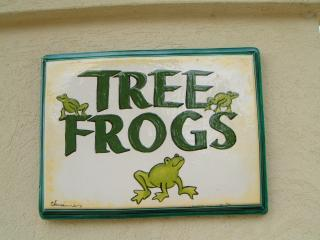 Welcome to Tree Frogs