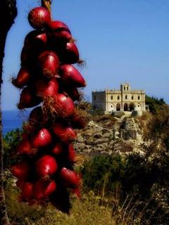 Famous red onions of Tropea!