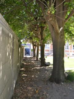 jardin avec bancs en fer forgé