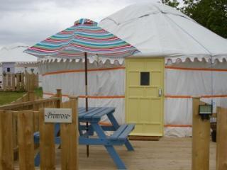Primrose Yurt, Goonhavern