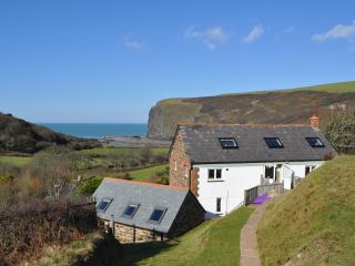 Lower Hillcott fabulous views, short walk to beach, Crackington Haven