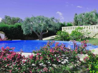 Monolocale con splendida piscina e giardino, Marina di Novaglie
