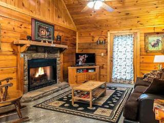 Living room with gas log fireplace and sleeper sofa