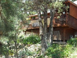 Gorgeous Mountaintop Views w/ Wifi and Dish, Ruidoso