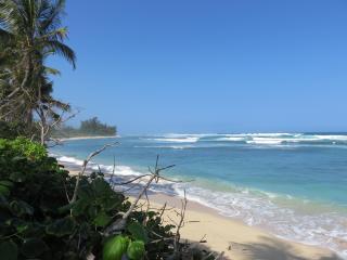 Paradise Surf Shack, Waialua