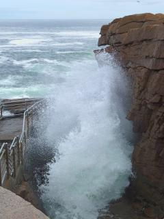 Thunder Hole on Park Loop Road.