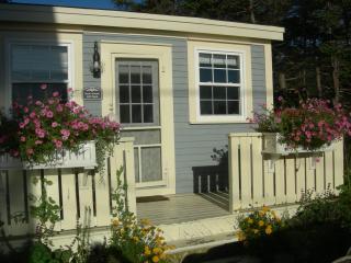 Hikers Paradise Blue House Cottage near St. John's, Tors Cove