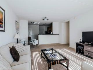 SPACIOUS AND ALLURING FURNISHED 1 BEDROOM 1 BATHROOM APARTMENT, Vernon Hills