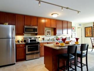 BEAUTIFULLY FURNISHED AND SPACIOUS 2 BEDROOM, 2 BATHROOM APARTMENT, Des Plaines