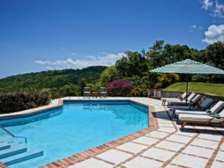 Magnificent 5 Bedroom Villa at Tryall, Hopewell