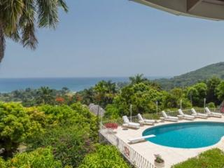 Excellent 8 Bedroom Villa at Tryall, Hopewell