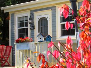 Blue House Cottage and Gardens on the Sea, Tors Cove