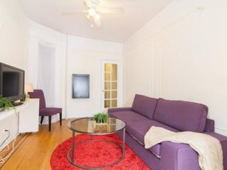 Sunny 1 Bedroom, 1 Bathroom Apartment in New York - Beautiful City Living, New York City