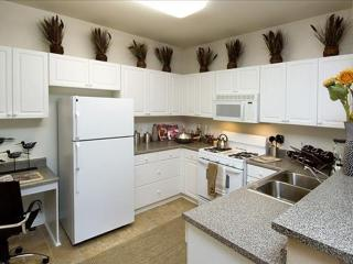 REMARKABLE FURNISHED 1 BEDROOM 1 BATHROOM APARTMENT, Pleasanton
