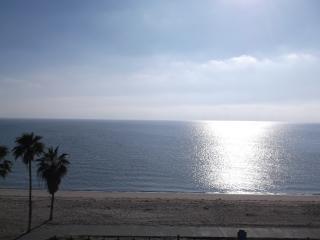 Corpus Christi Beachfront Condo 2202