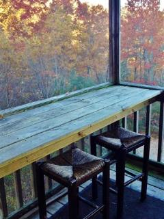 The outside bar area on the bottom level screened-in porch