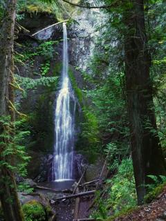 Experience the mystery and majesty of the PNW firsthand: visit beautiful Marymere Falls!