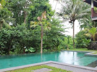 Riverside Hideaway in Heart of Ubud