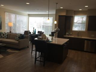 Delux 2B Apt in Irvine walking distance plaza