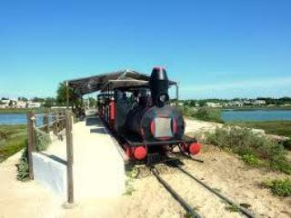 Train to Barril beach. Its about 1.50 euros each, great for the kids. You can walk it in 10 mins.
