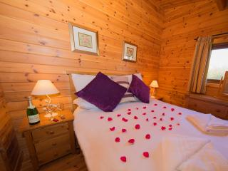 Pet friendly log cabin in the Somerset countryside (Badger's Rest)