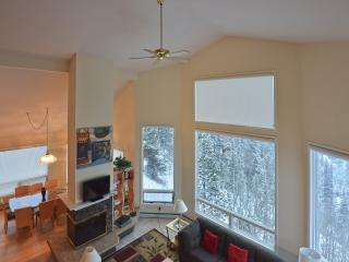 Breathtaking Views:  Shuttle, Sleeps 18, Hot Tub, Breckenridge