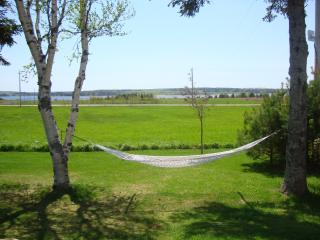 The best place to relax is in the hammock at the front of the cottage. Ahhhh !