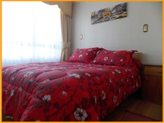 Apartamento Amoblado Gabriela Mistral, Temuco