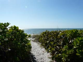 Turtle Hatch - Large home within beach proximity, Naples