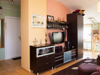 Centrally located new studio flat, Kaunas