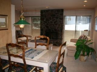 Warm Springs Sawtooth Condo #25
