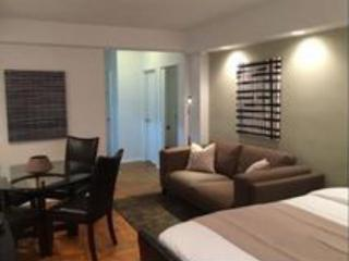 BEAUTIFUL, SPACIOUS AND LUXURIOUS STUDIO APARTMENT, Nueva York