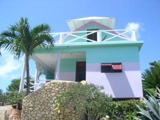 villa stella , una casa inserita in un giardino endemico