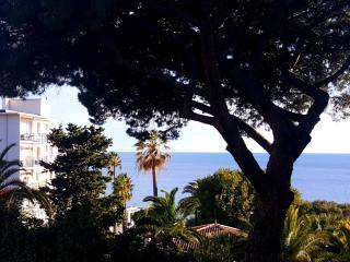 Superbe 2 Pièces- terrasse - vue sur mer-parking, Cannes