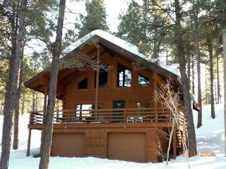Cool Cabin in the tall pines
